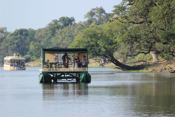 Fluss Chobe Mit Dem Boot Befahren