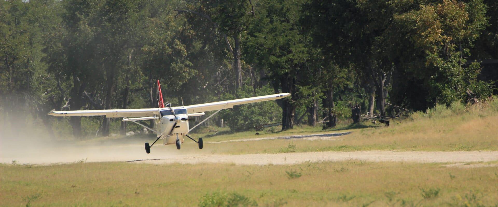fly-in-safari-botswana-moremi-game-reserve
