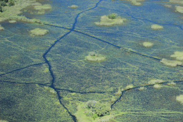Okavango Delta Flugsafari
