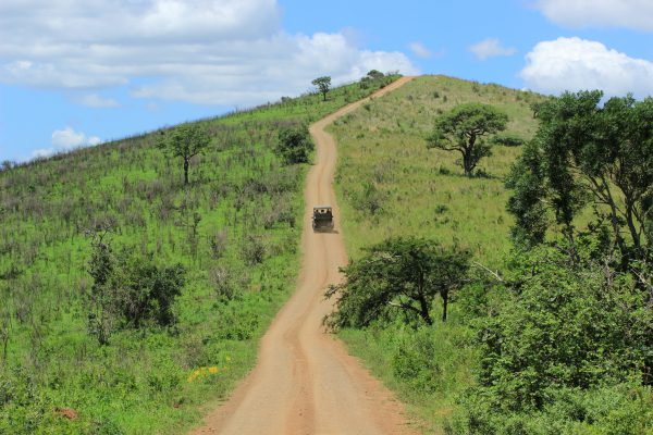 Safari-Jeep Im Hluhluwe Park