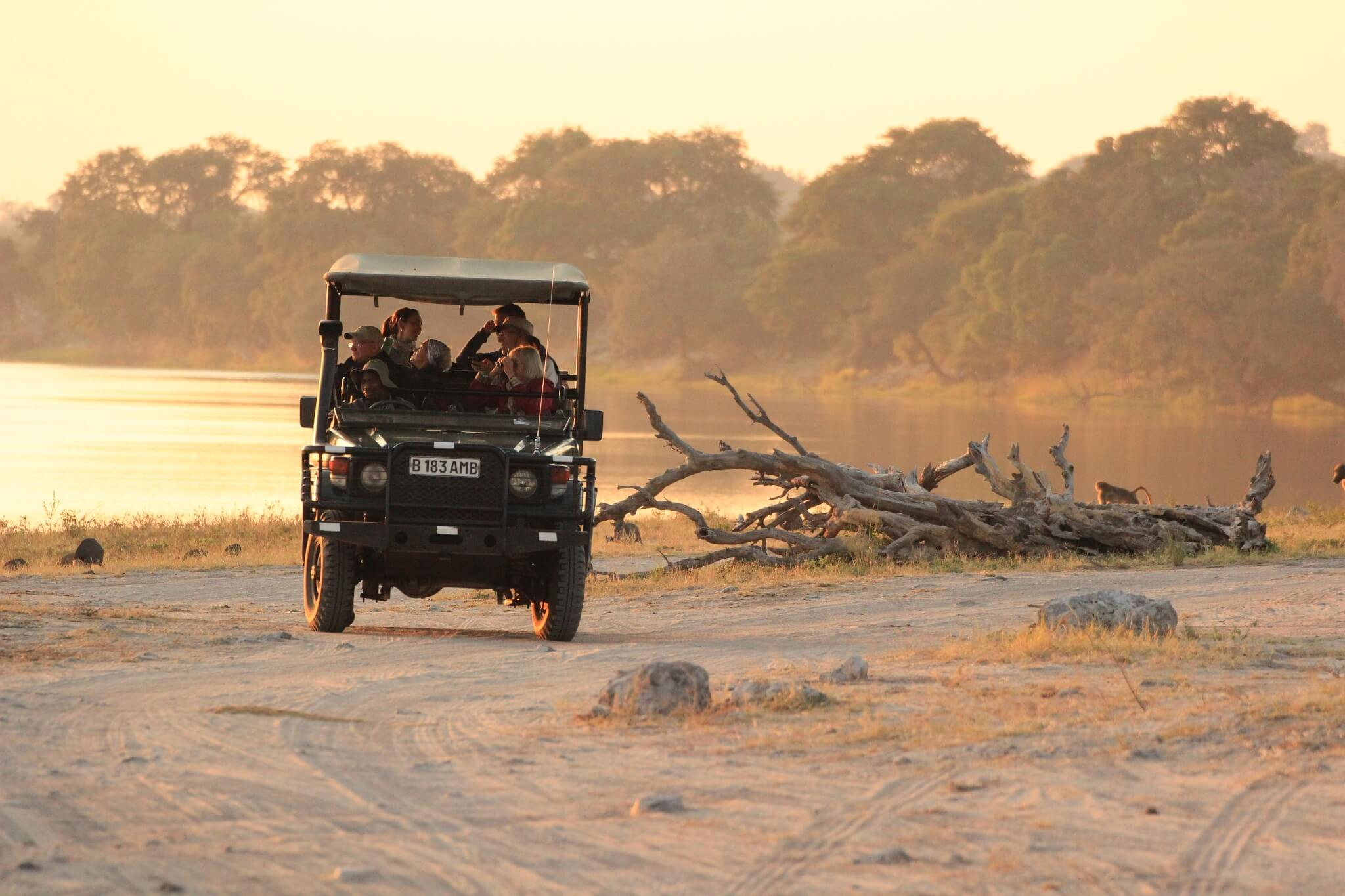 Safari-Jeep Im Moremi NP