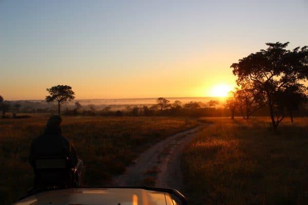 Sonnenuntergang Safari