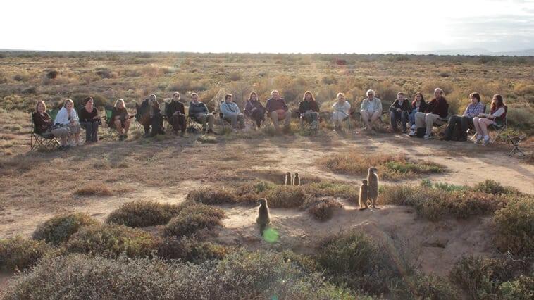 suedafrika-oudtshoorn-erdmännchen-tour
