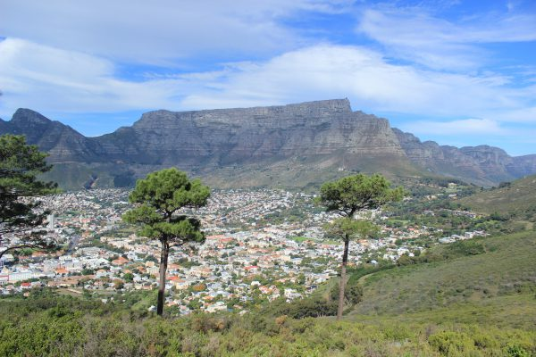 Table Mountain Nationalpark