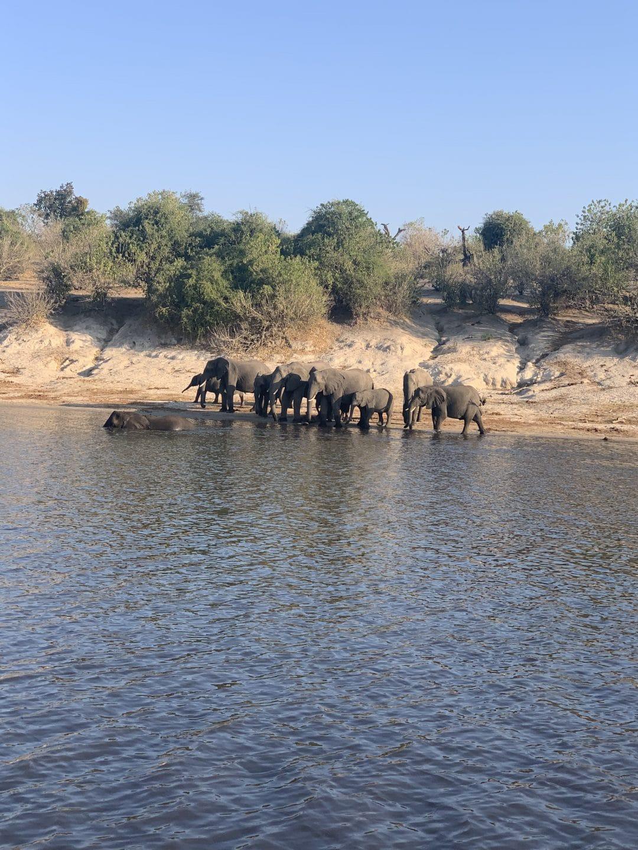Botswana Complete Flugsafari