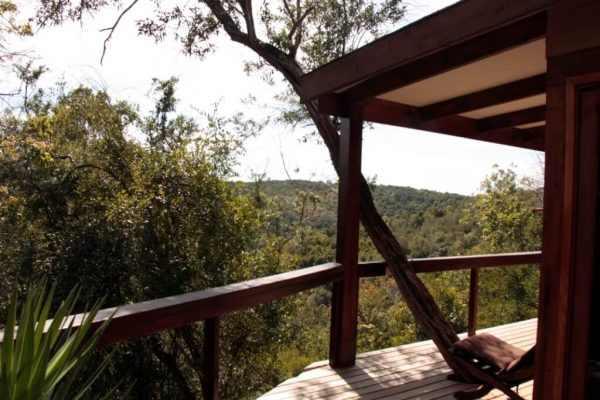 Blick von der Terrasse der Hog Hollow Country Lodge
