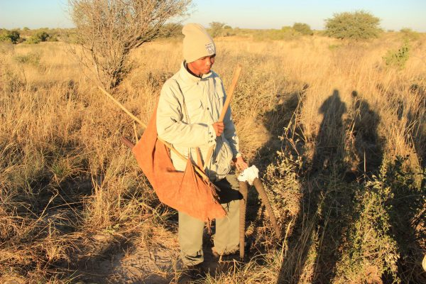 San Buschmen Im Central Kalahari Game Reserve