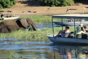 Botswana Chobe Mietwagenreise Feature Image