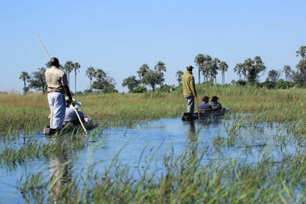 Botswana Flugsafari Three Rivers Safari Feature Image