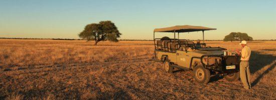 Safari Fahrzeug In Der Kalahari