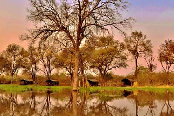 Botswana-moremi-game-reserve-khwai-tended-camp