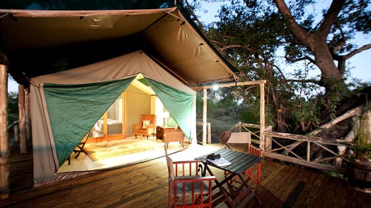 Botswana Moremi Game Reserve Pom Pom Camp