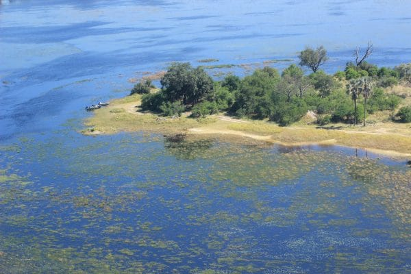Insel Im Okavango Delta Von Oben