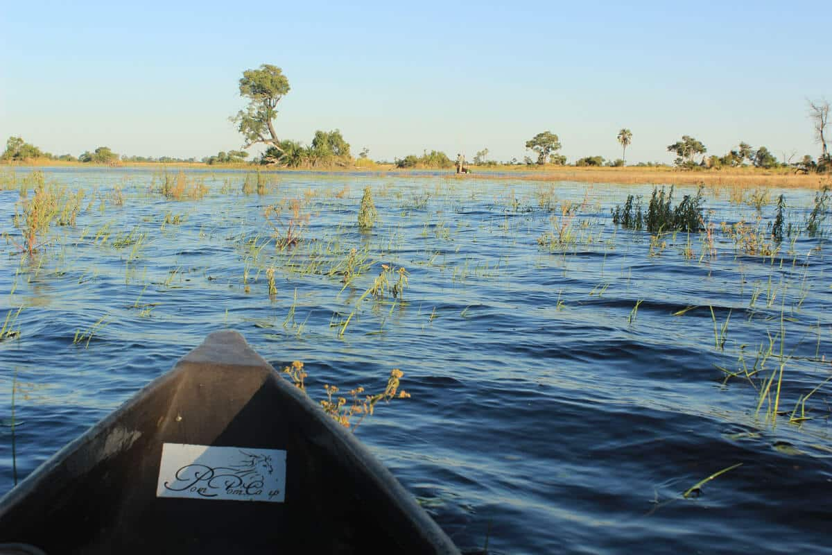 Botswana-okavango-delta-mokoro-fahrt