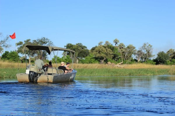 Motorboot Safari im Okavango Delta