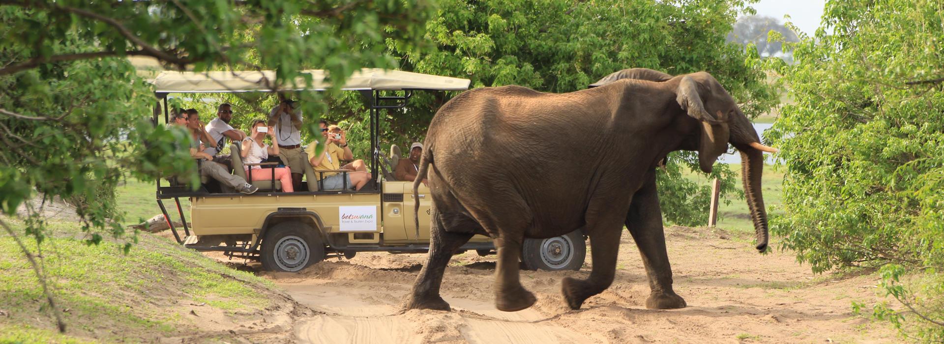 Mietwagenreisen Botswana