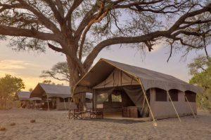 Botswana Savute Savute Under Canvas