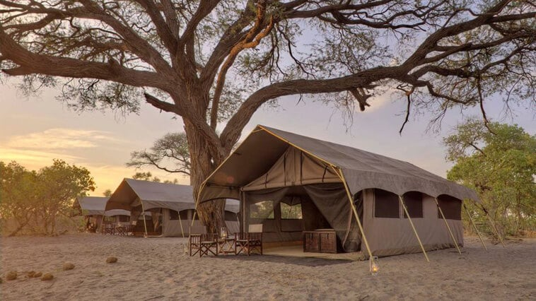 Botswana-savute-savute-under-canvas