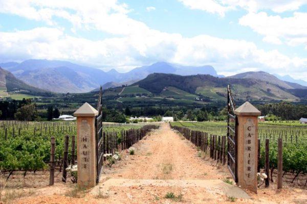 Eingang zu einem Weingut: Haute Cabriere