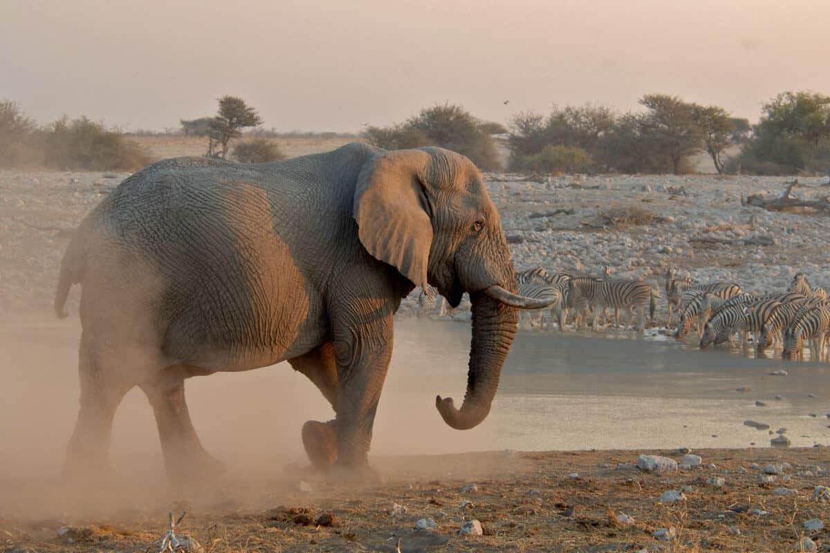 Namibia Mietwagenreise