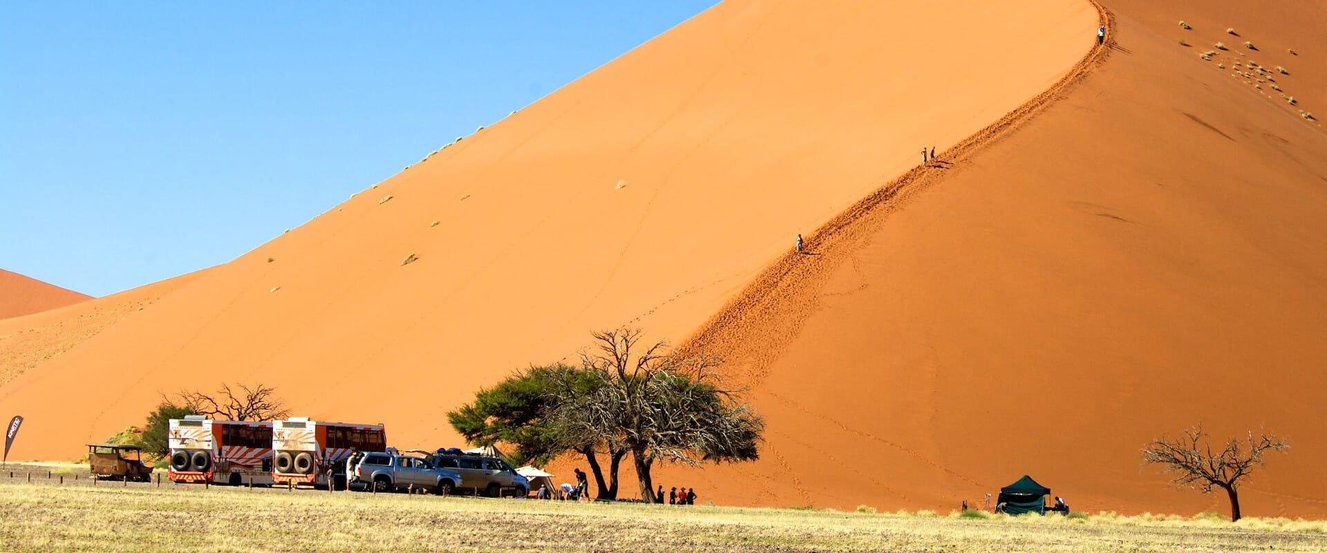 Düne in der Namib wird erklommen