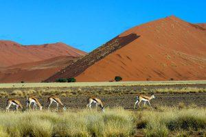 Ssossusvlei Sanddünen In Namibia