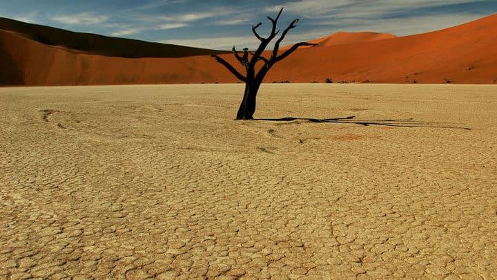 Namibias Vielfalt