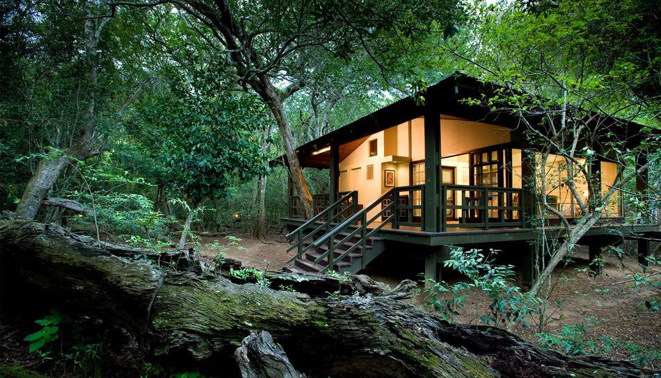 phinda-forest-lodge-01