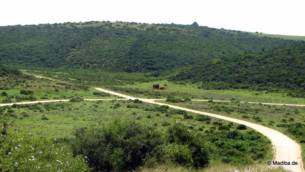 Afrikas Landschaft von Straßen durchzogen
