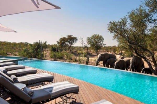 Südafrika Reisen - Krüger Park Flugsafari