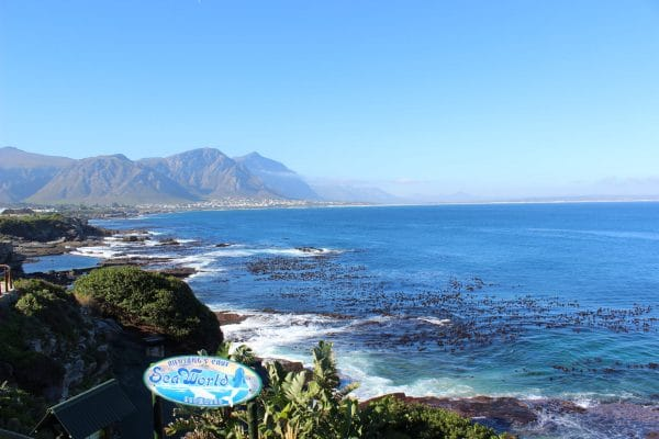 Ausblick Walker Bay In Hermanus