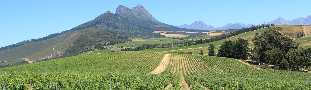 Suedafrika Kap Weinland Header