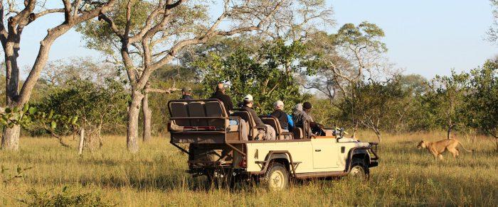 Pauschalreisen Südafrika