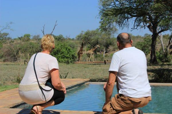 Tierbeobachtungen vom Pool der privaten Safari Lodge