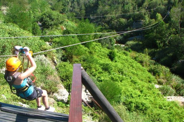 Canopy Tour Im Tsitsikamma National Park