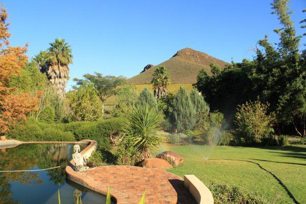 Robertson Weinberge Südafrika