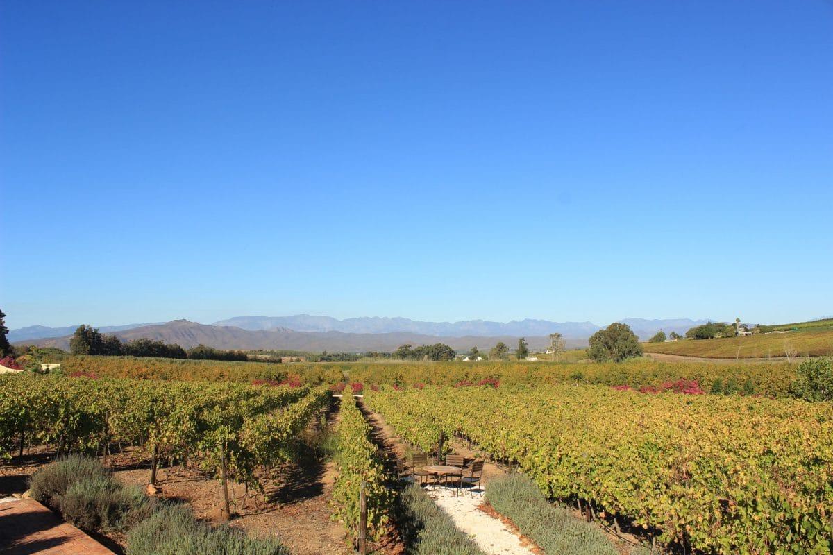 Robertson Wine Valley Südafrika