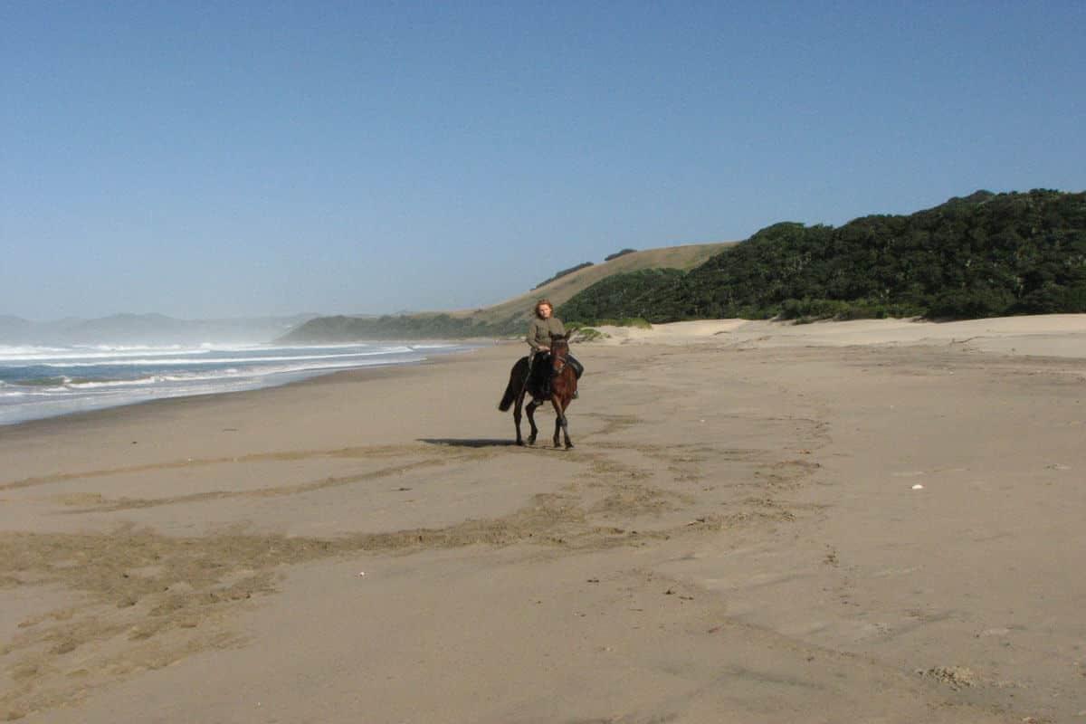 Reitausflug am Sandstrand an der Wild Coast