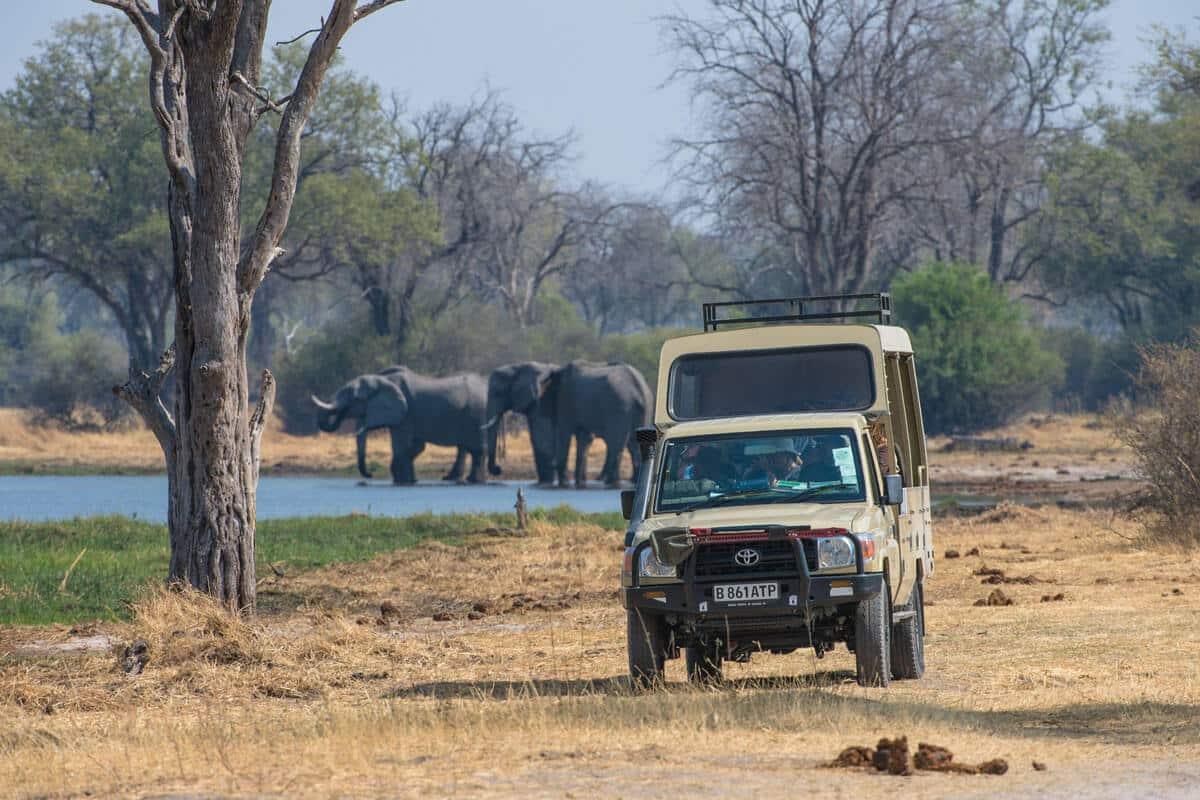 Sunway Botswana Moremi Game Drive