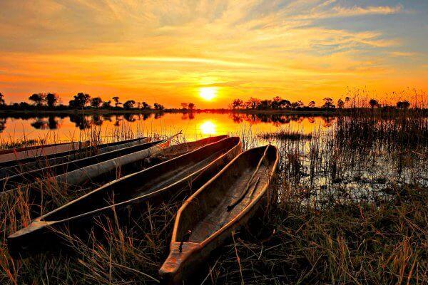Botswana; Okavango Delta Sundowner