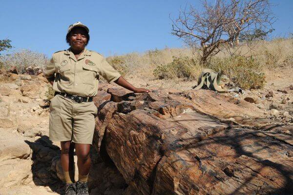 Sunway Namibia Petrified Forest
