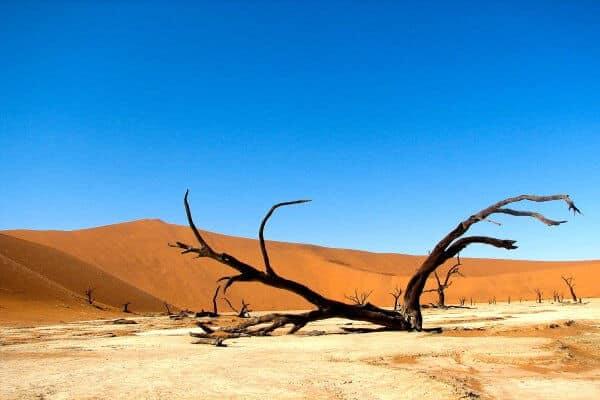 Sunway Namibia Sossusvlei