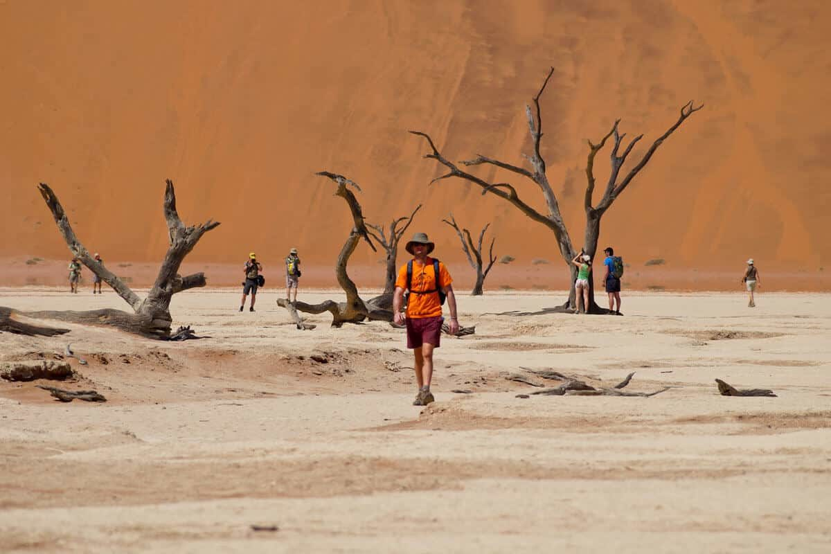Am Fuß Einer Düne In Namibia