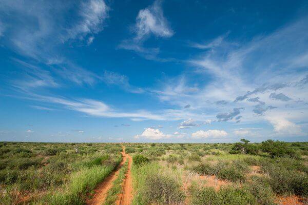 Sunway South Africa Kgalagadi Track