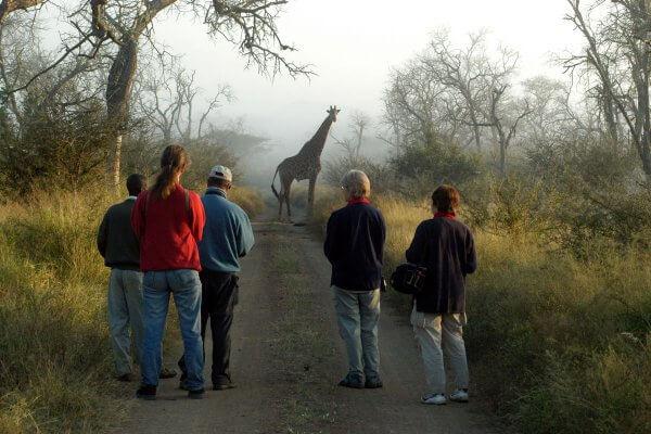 Sunway Swaziland Hlane Morning Walk