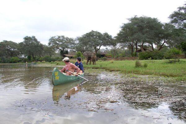 Flussfahrt Mit Elefant Im Hintergrund