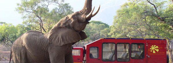 Overland-Safaris