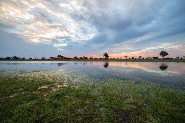 Sunway Zimbabwe Hwange Np