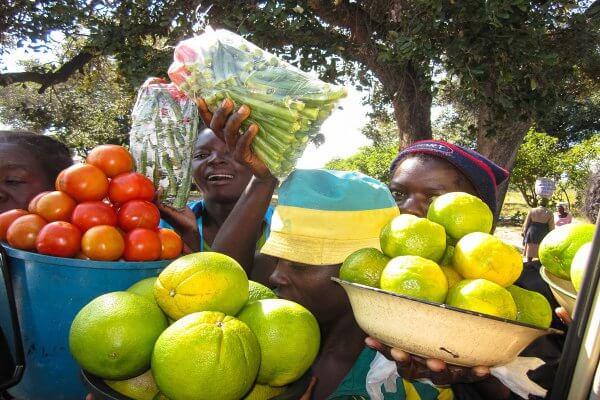 Zimbabwe Street Vendors